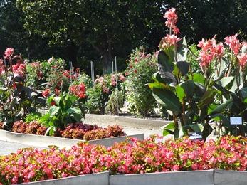2018.08.21-023 jardin botanique