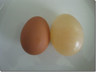 egg vinegar