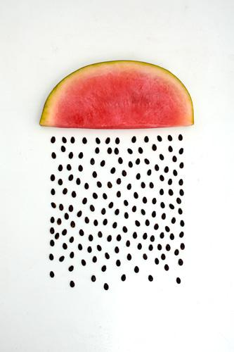 https://lh3.googleusercontent.com/-01zxb7tq79k/T59QR0ikcuI/AAAAAAAAGGg/088mHf_2DXk/s500/012_watermelon.jpg