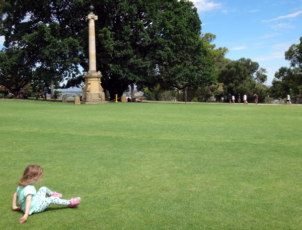 Lots of open space to play in Kings Park