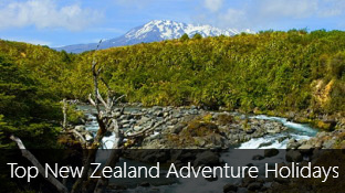 6 Top New Zealand Adventure Holidays