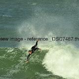 _DSC7487.thumb.jpg