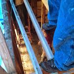 Repairs From Fallen Tree