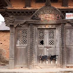 Nepal-145