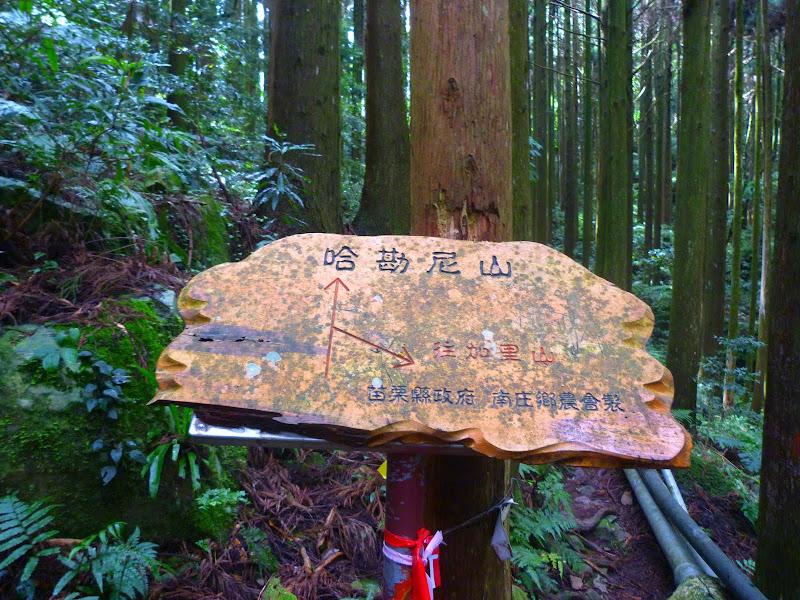 Petite randonnée au sud de Taufen, dans la région de Miaoli - P1330587.JPG