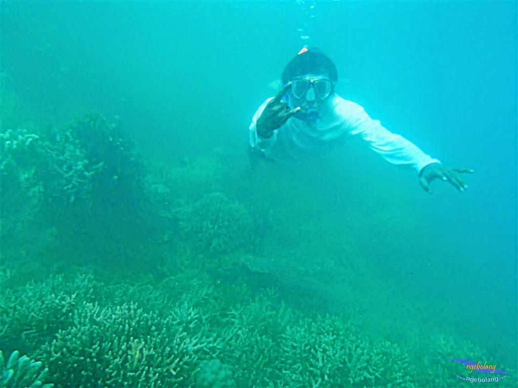 Pulau Harapan, 16-17 Mei 2015 Olympus  29