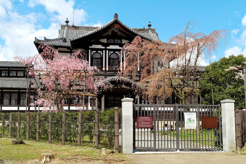 2014 Japan - Dag 8 - janita-SAM_6389.JPG