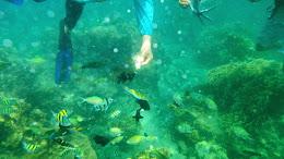 ngebolang-pulau-harapan-5-6-okt-2013-pen-24
