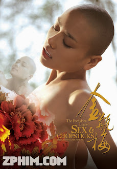 Kim Bình Mai - The Forbidden Legend Sex & Chopsticks (2008) Poster
