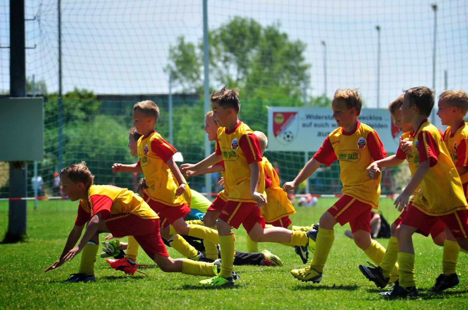 Mladší přípravka si dovezla bronzové medaile z velkého mezinárodního turnaje Danube Chalange Cup 2014, který se odehrál v Rakousku.