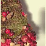 Alutaguse_Christmastree.jpg