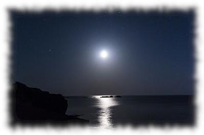 ff夜海500×332.jpg