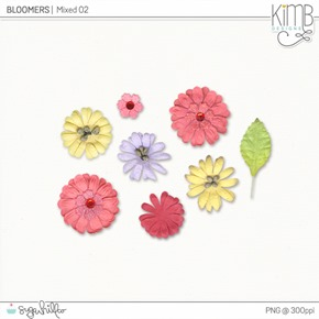 kb-Bloomers_mixed2_6