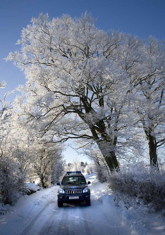 SnowBR31