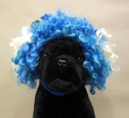 Felted Dog Wigs