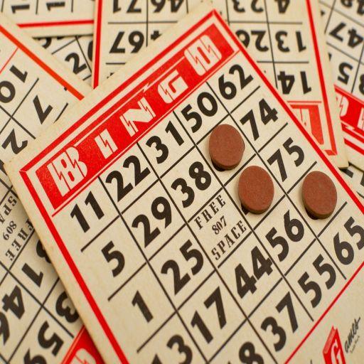 Classic Bingo - (Offline) 2