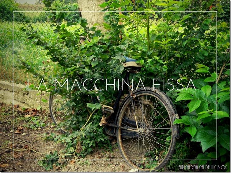 La Macchina Fissa 12