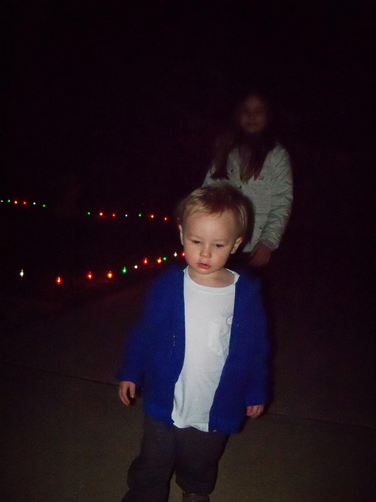 Christmas Lights - 115_8854.JPG