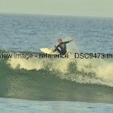 _DSC9473.thumb.jpg