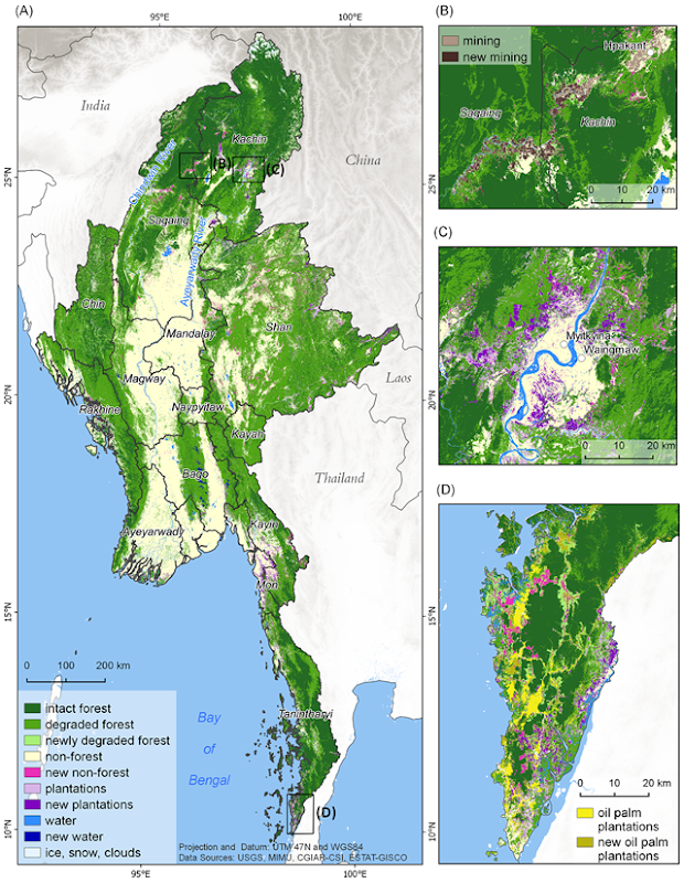 Distribution of forest cover and forest cover change across Myanmar. (A) Countrywide forest cover and change; (B) Forest losses from mining along the Uru River in Kachin and Sagaing; (C) Plantation development near Myitkyina, Sagaing; (D) Plantation development near Mawdaung, Tanintharyi. Graphic: Bhagwat, et al., 2017 / PLOS ONE