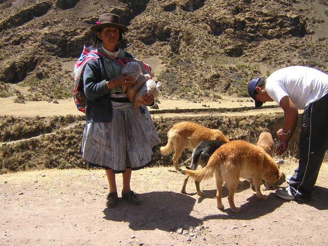 Huancavelica (141)