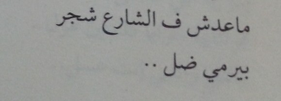 ماعدش شاف وطن علي سلامة