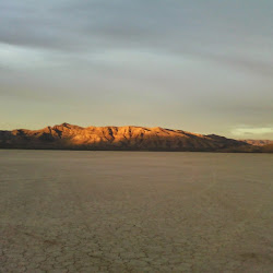 dry lake bed's profile photo