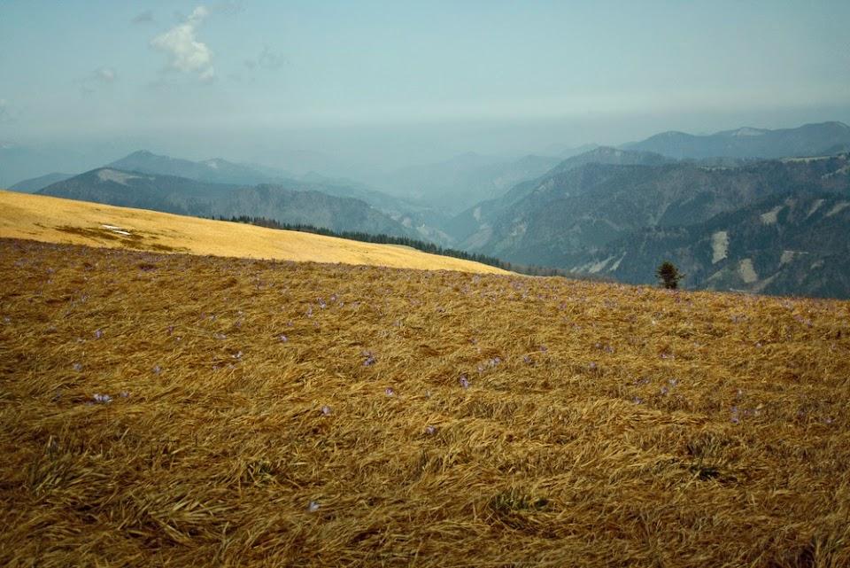 Ploska i Lubochnianska dolina
