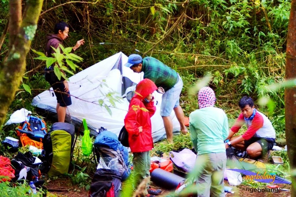 ngebolang gunung sumbing 1-4 agustus 2014 nik 16