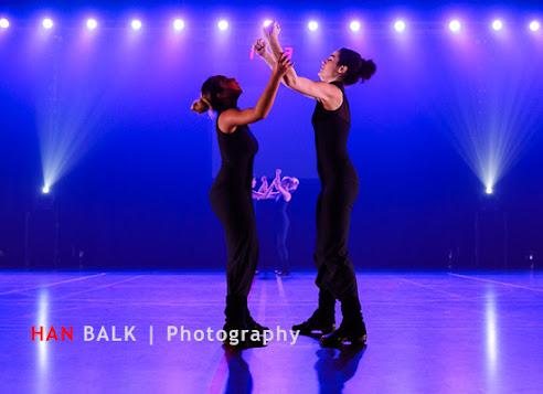 Han Balk Voorster Dansdag 2016-4784.jpg