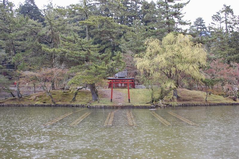 2014 Japan - Dag 8 - jordi-DSC_0478.JPG