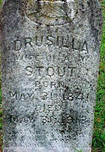 Drucilla Stout