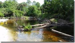 River blocked-3