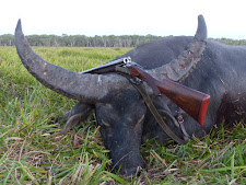 A big trophy bull on the floodplains late afternoon with an English double rifle. This is actually my Wilkes 475 no 2. I didn't shoot it, but I wish I did!