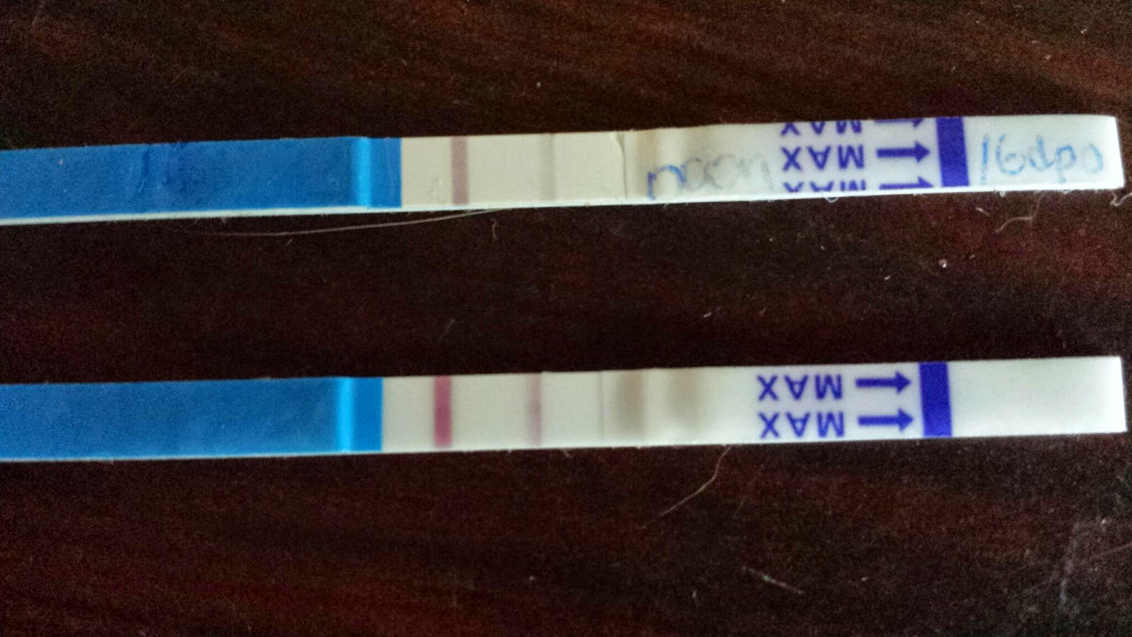 Waiting For Our Little Sprouts: Pregnancy Test 16 dpo and 17 dpo