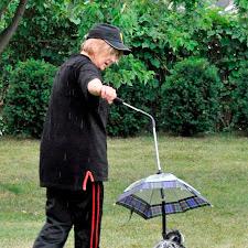 dog_umbrella