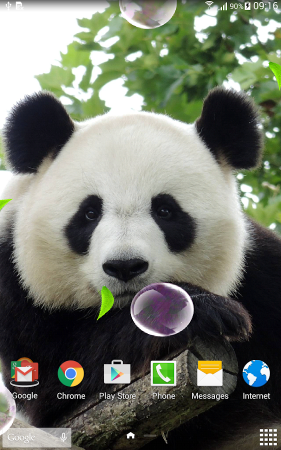 cute panda live wallpaper android apps on google play