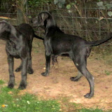 Greyson & MacKenzie at 4 months! - IMG_0012.JPG