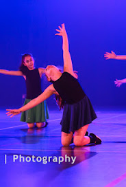 Han Balk Voorster Dansdag 2016-3070.jpg