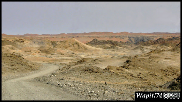 Balade australe... 11 jours en Namibie - Page 2 IMG_0676