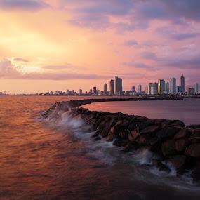 Harbor View by Wilfredo Garrido - City,  Street & Park  Vistas ( vistas, harbor, park, street, city )