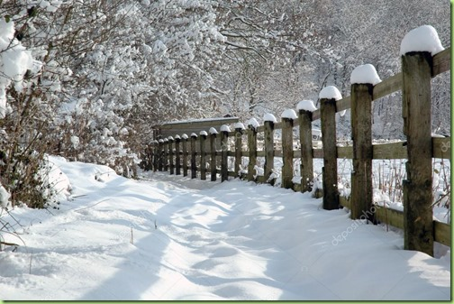 snow-fence-countryside