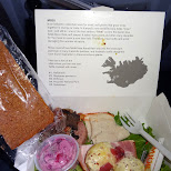 outstanding lunch on Icelandair - Christmas Lunch in Reykjavik, Hofuoborgarsvaeoi, Iceland