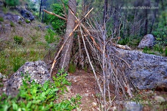 Bolsa De Trabajo Merceria Del Refugio : Refugio sencillo con ramaje unido a un ?rbol