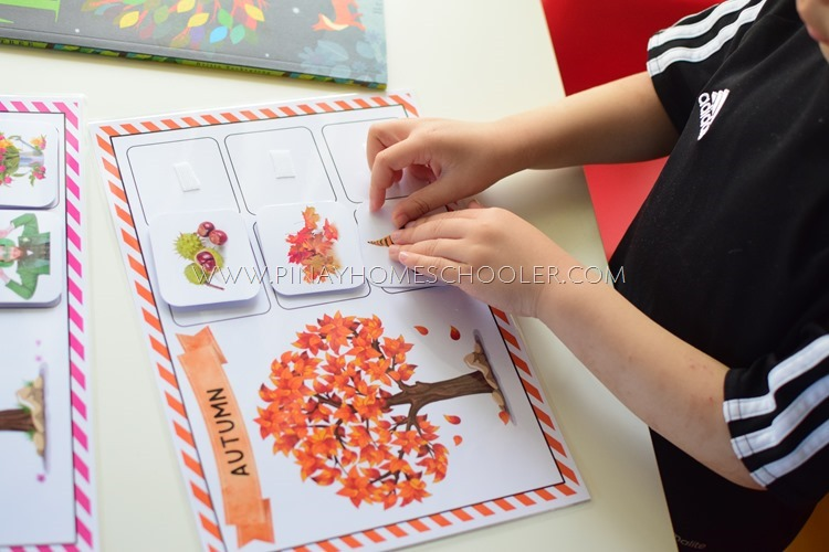 Fall Season Sorting Activity