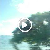 Hawaii Day 3 - GHjS_X3-IUGNYI81Aj21EIusGoehItxcZyDMMQ6vWpxJTSqGMx1AuLc7PsxUxnuf5u6Y6O9gVcY=m18