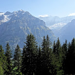 view of the First Mountain in Grindelwald, Bern, Switzerland