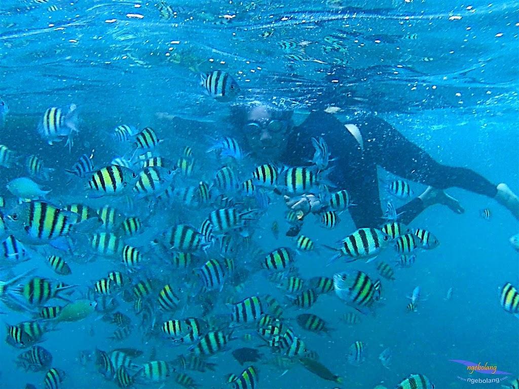 pulau harapan, 6-7 juni 2015 samsung gopro be 25