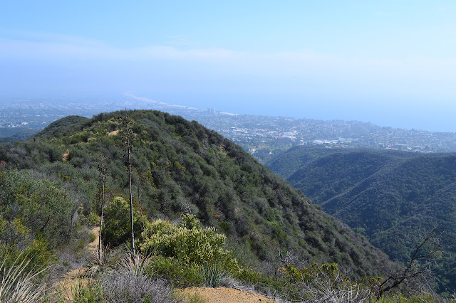 trail following the ridge