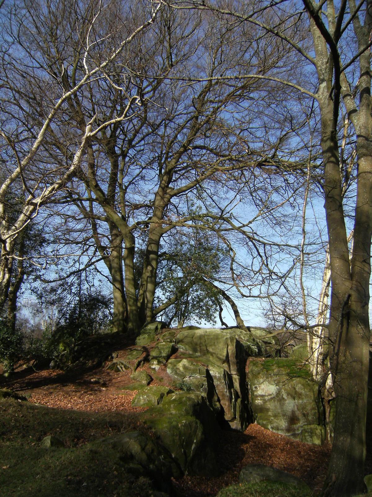 1102030052 Sandstone outcrop on the High Weald Landscape Trail